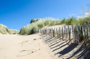 beach-219788_640