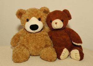 teddy-506468_640